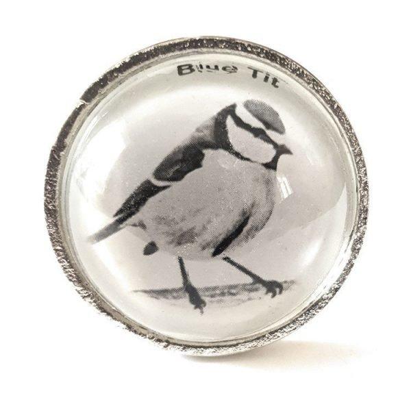 Set of 6 British Garden Birds Cabinet Knobs - Glass and Steel