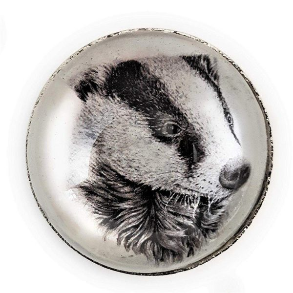 Set of 6 Woodland Animals Cabinet Knobs - Glass and Steel